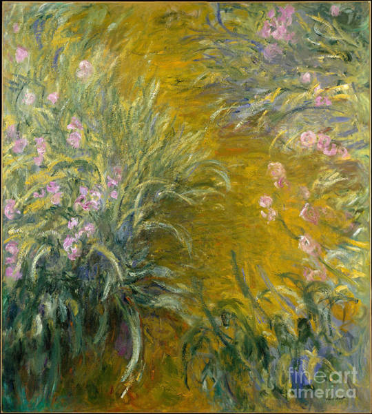 Painting - The Path Through The Irises by Claude Monet