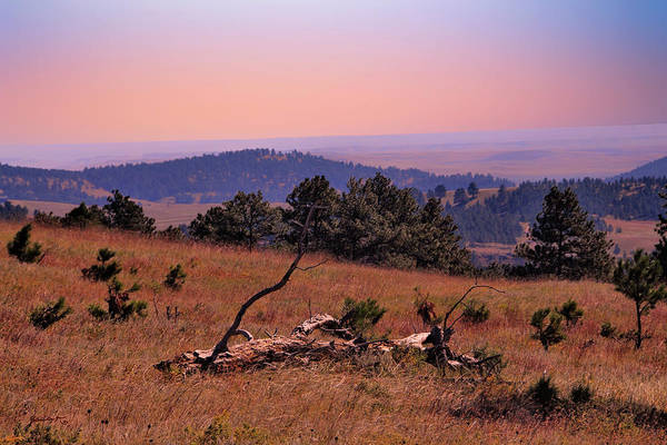 Photograph - Autumn Day At Custer State Park South Dakota by Gerlinde Keating - Galleria GK Keating Associates Inc