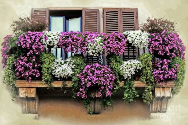 Photograph - A Balcony In Rome by David Birchall