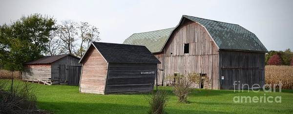 Wall Art - Photograph - A Barn, A Shed, A Leaner by Ron Long