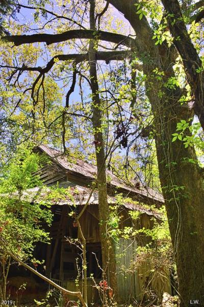 Photograph - A Barn Among The Trees Vertical by Lisa Wooten