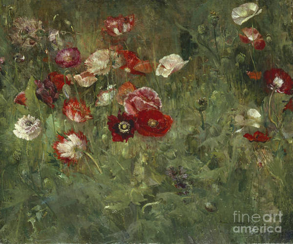Remembrance Painting - A Bed Of Poppies, 1909 by Maria Oakey Dewing