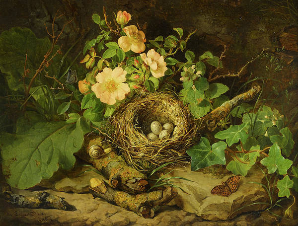 Wall Art - Painting - A Bird's Nest Among Tea Roses by Josef Lauer