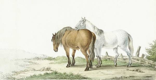 Wall Art - Painting - A Brown And White Horse On A Road Next To A Fence By Jean Bernard  1802  by Celestial Images