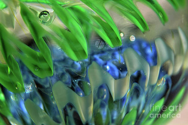 Photograph - A Bubble In Beauty Abstract by Karen Adams