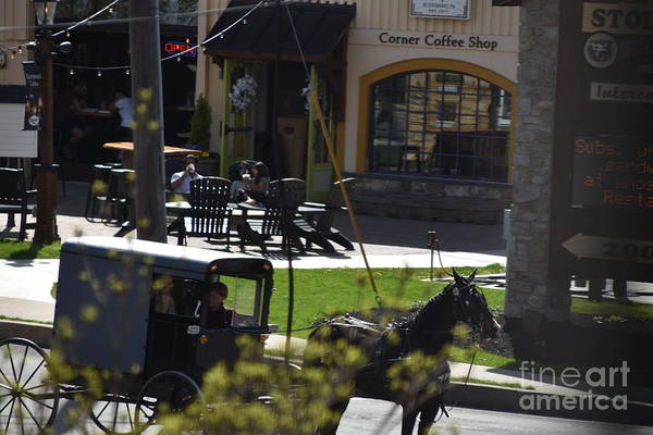 Photograph - A Buggy Ride In Town by Christine Clark