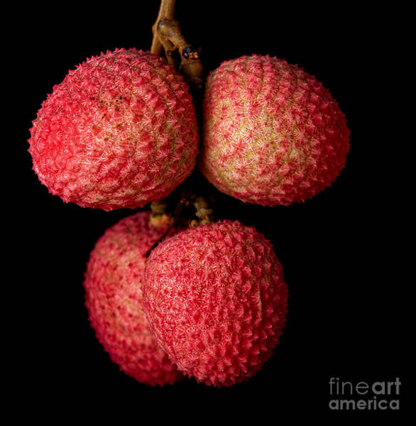 Raw Wall Art - Photograph - A Bunch Of Lychees Against A Black by Hein