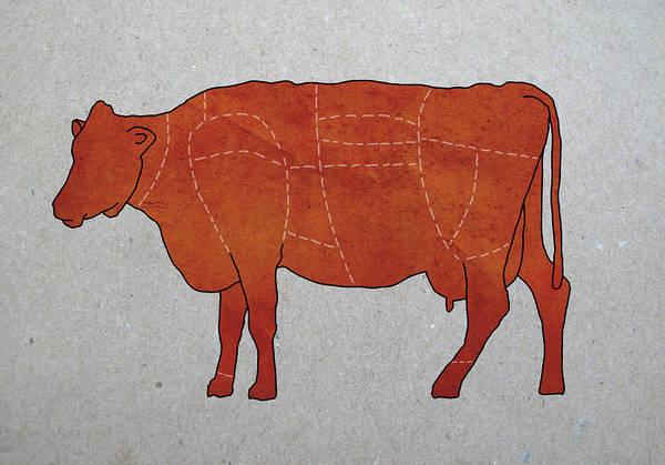 Domestic Digital Art - A Butchers Diagram Of A Cow by Malte Mueller