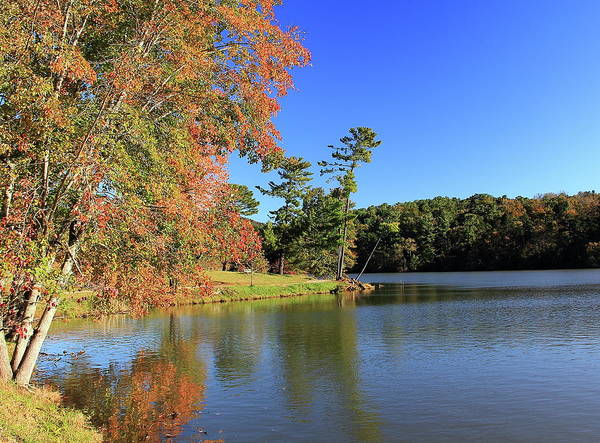 Photograph - A Calm Peaceful Day by Allen Nice-Webb