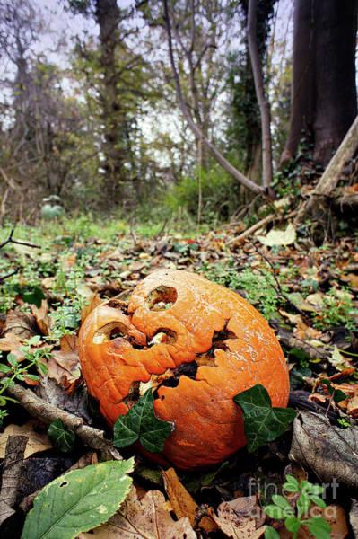 Wall Art - Photograph - A Carved Pumpkin by Tom Gowanlock