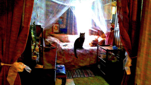 Digital Art - A Cat's Favorite Spot by Joy McKenzie