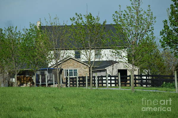 Photograph - A Clear April Afternoon On An Amish Farm by Christine Clark