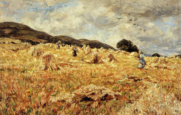 Wall Art - Painting - A Cornfield Near Wooler by James Charles