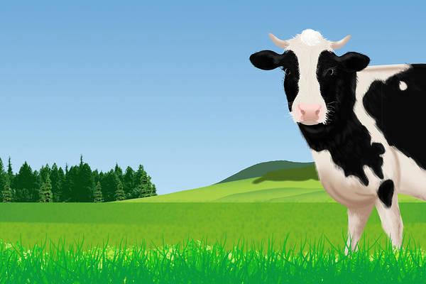 Ranch Digital Art - A Cow In The Field, Illustration by Imagewerks