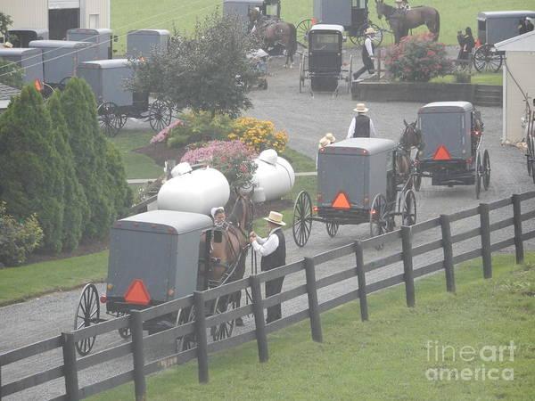 Photograph - A Crowded Amish Farm by Christine Clark