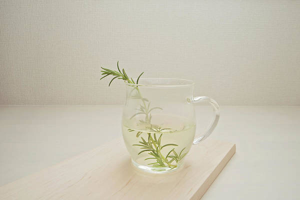 Tea Photograph - A Cup Of Rosemary Tea by Margarita Komine