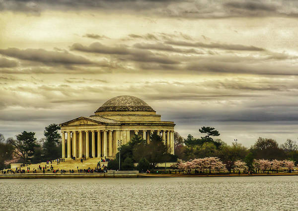 Wall Art - Photograph - A Dc Spring by Kathi Isserman