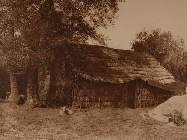 Painting - A Diegueno Home By  Edward Sheriff Curtis Photogravure by Celestial Images