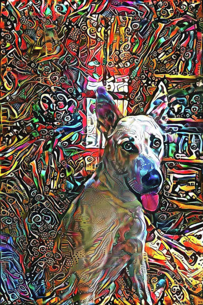Digital Art - A Dog Named Moe by Peggy Collins