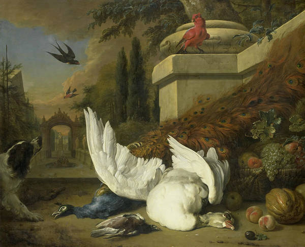 Painting - A Dog With A Dead Goose And A Peacock by Jan Weenix