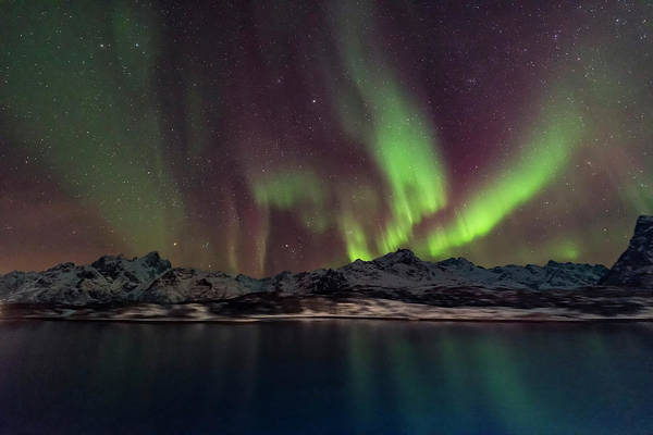 Photograph - A Faint But Colourful Aurora by Alan Dyer