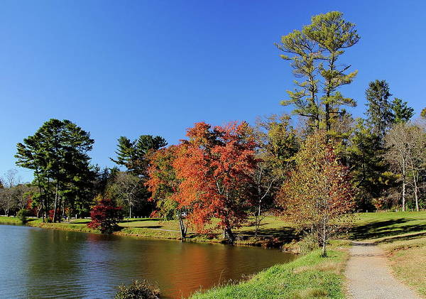Photograph - A Fall Walk To Relax by Allen Nice-Webb
