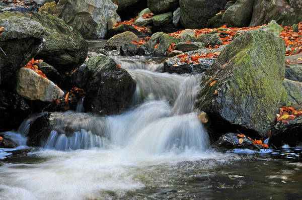 Wall Art - Photograph - A Fast Flow by Mike Martin