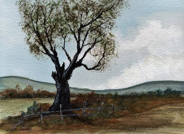 Wall Art - Painting - A Field Tree by James Michael Johnson