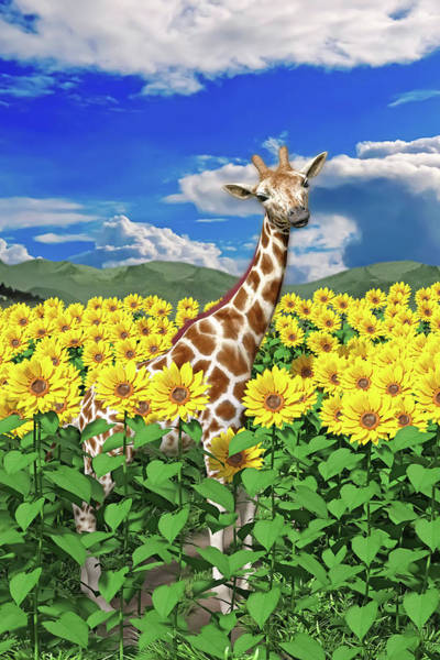 Wall Art - Digital Art - A Friendly Giraffe Hello by Betsy Knapp