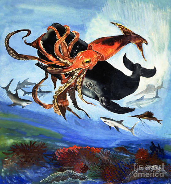 Wall Art - Painting - A Giant Squid Fights For Its Life Against The Sharp Teeth Of A Sperm Whale by English School