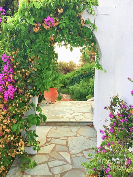 Wall Art - Photograph - A Greek Garden by Tom Gowanlock