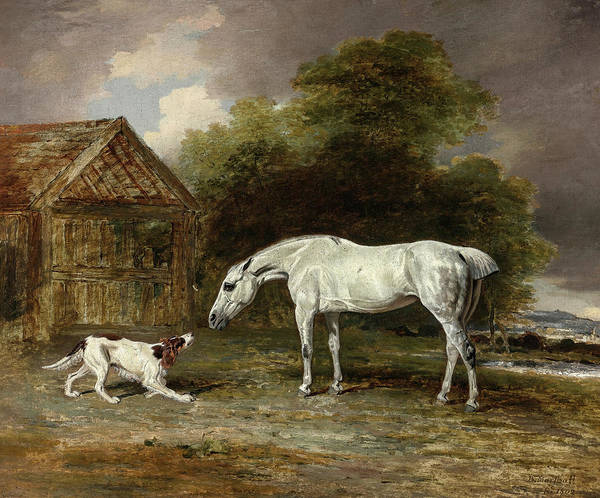Wall Art - Painting - A Grey Hunter And A Spaniel, 19th Century by Ben Marshall