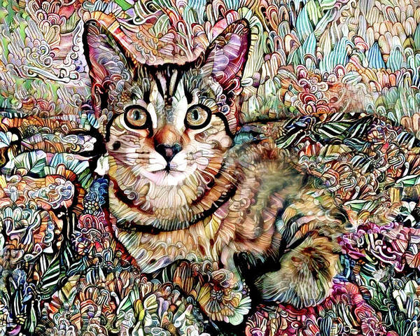 Digital Art - A Kitten Named Prada by Peggy Collins