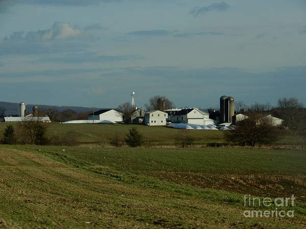 Photograph - A Late Autumn Day On An Amish Farm by Christine Clark