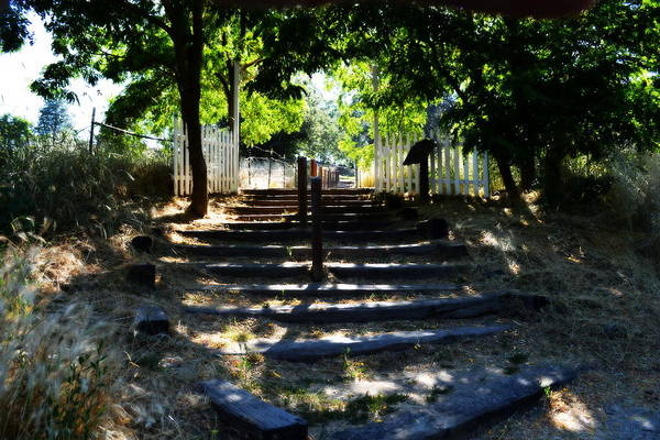 Photograph - A Lifes Stairway by Glenn McCarthy Art and Photography