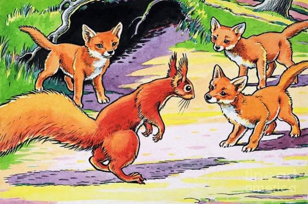 Wall Art - Painting - A Little Red Squirrel And Baby Foxes  by Harry M Pettit