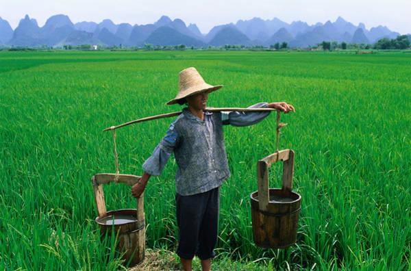 Wall Art - Photograph - A Local Farmer Carrying Water Buckets by Keren Su