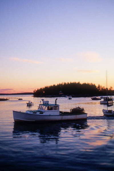 Trapped Photograph - A Maine Lobster Boat by Wesley Hitt
