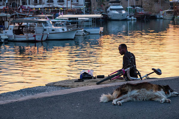 Photograph - A Man And His Dog In The Kyrenia Harbor by Iordanis Pallikaras