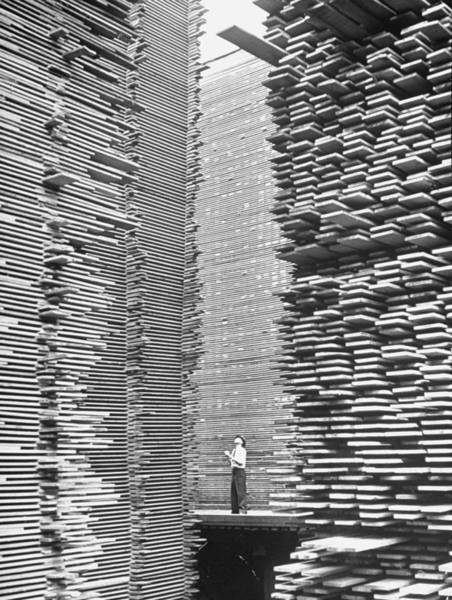 Photograph - A Man Standing In The Lumberyard Of Seat by Alfred Eisenstaedt