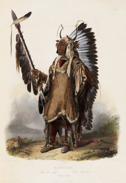 Pueblo Painting - A Mandan Chief by Maximilian of Wied-Neuwied