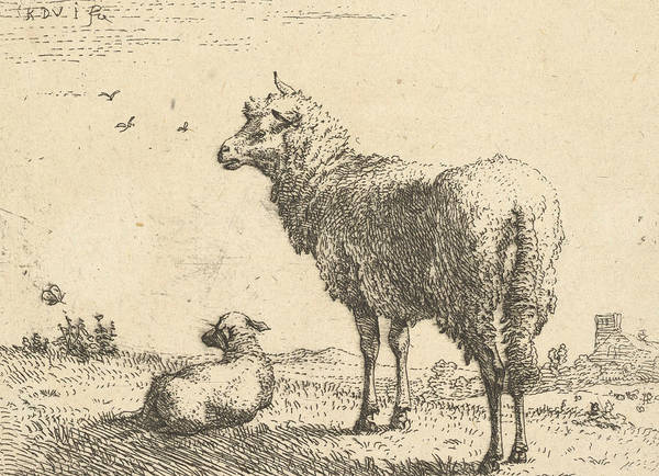 Wall Art - Relief - A Mature Sheep In Three-quarters View by Karel Dujardin