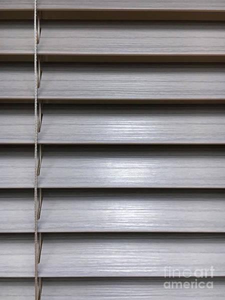Wall Art - Photograph - A Modern Blind by Tom Gowanlock