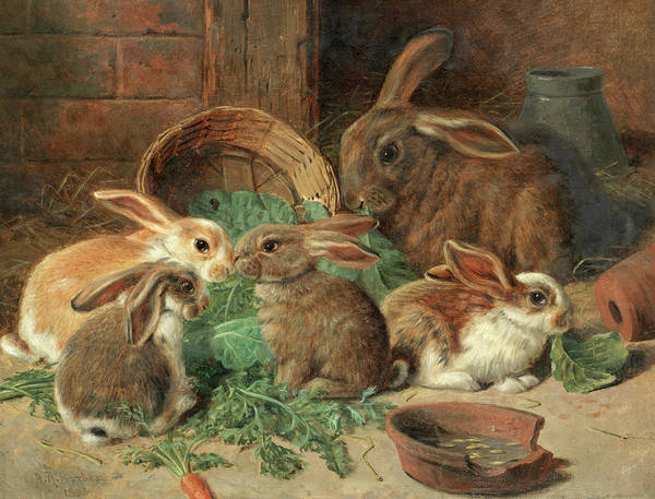 Wall Art - Painting - A Mother Rabbit And Her Young by Alfred Richardson Barber