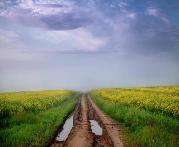 Photograph - A Muddy Trail by Dan Jurak