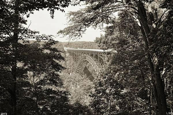 Photograph - A Nature Framed View Of New River Gorge Bridge West Virginia Black And White by Lisa Wooten