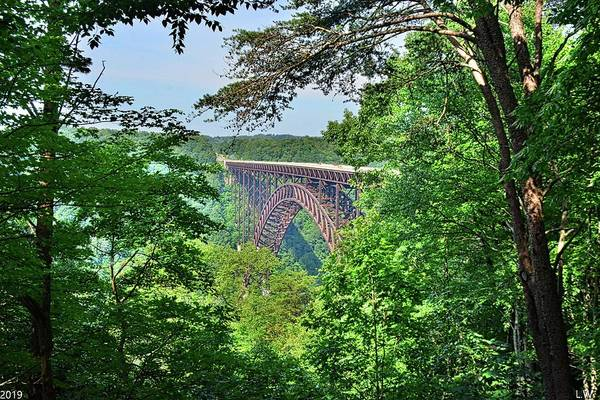 Photograph - A Nature Framed View Of New River Gorge Bridge West Virginia by Lisa Wooten