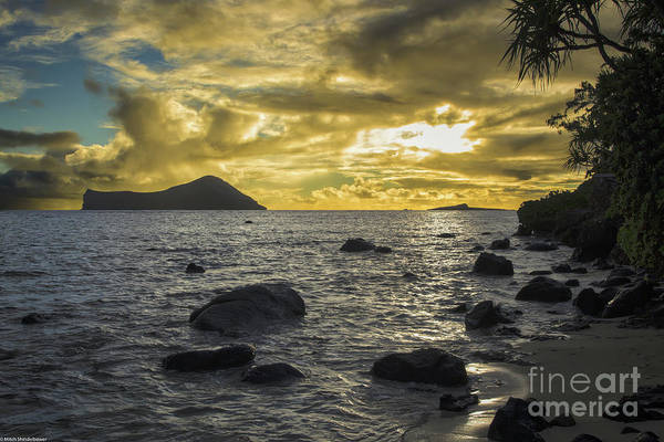 Wall Art - Photograph - A New Day's Dawning by Mitch Shindelbower