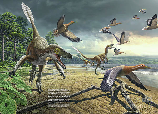 Photograph - A Painting Depicting Dromaeosaurs And An Ancient Duck Species, Vegavis Iaai by Monica Serrano