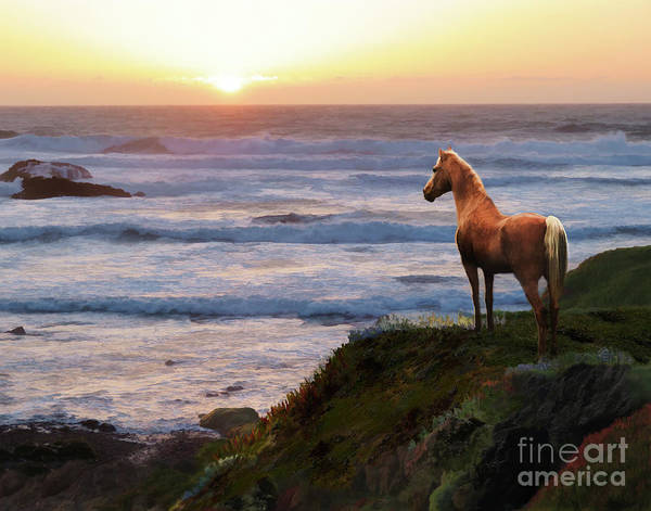 Digital Art - A Palomino Sunset by Melinda Hughes-Berland
